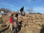 大通县将残膜回收作为改善农业生态环境的着力点 - Qhnews.Com