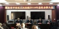 平安区人民法院召开2018年工作总结暨表彰大会 - 法院