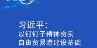 联播+丨习近平:以钉钉子精神夯实自由贸易港建设基础 - Qhnews.Com